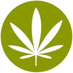 marijuana concentrate zittles banana kush strawberry cough rh allbud com orange crush logopedia orange crush logo png