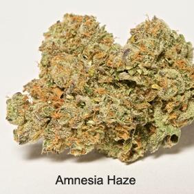 Amnesia Haze Product image
