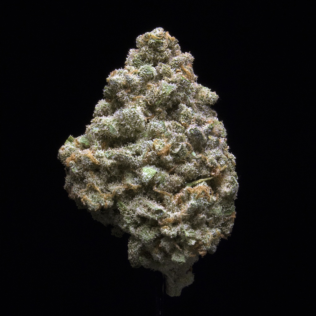 Arcata Trainwreck (AU Limit: 3.5g Flower and 3.5g Shake and 10 - 0.75 pre rolls / No Med Limit) Product image