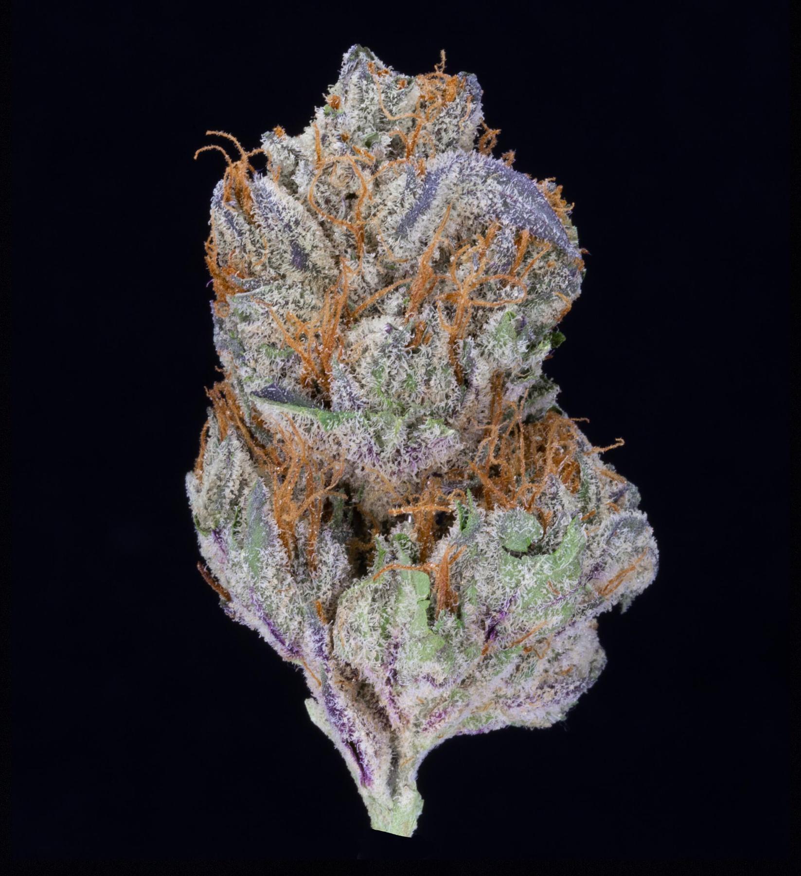 Blackwater OG #9 (AU Limit: 3.5g TOTAL flower / No Med Limit) Product image
