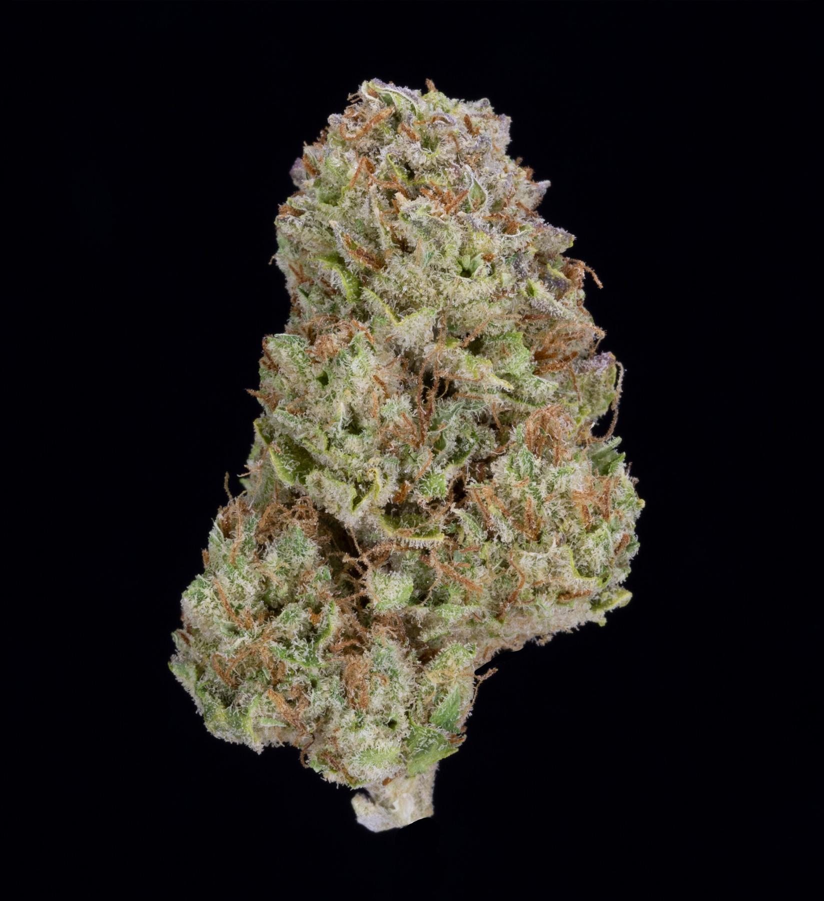 Blackwater OG (AU Limit: 3.5g TOTAL flower / No Med Limit) Product image