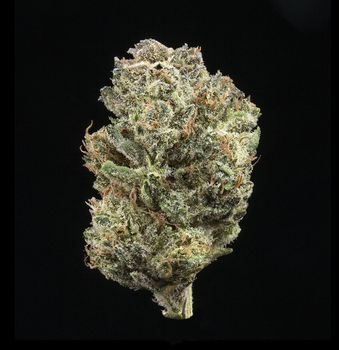 Citrix (AU Limit: 3.5g TOTAL Flower and 3.5g TOTAL Shake and 10 - 0.75 pre rolls / No Med Limit) Product image