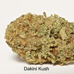 Dakini Kush Product image