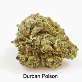 Durban Poison Product image