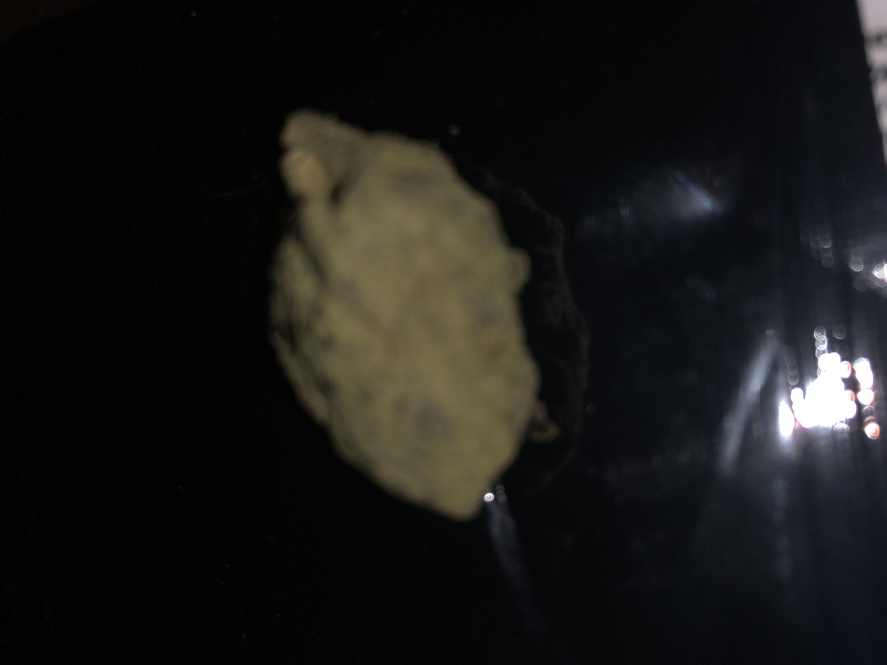 Girl Scout Cookies Moon Rocks Product image