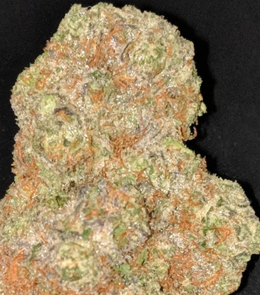 Gorilla Cookies [UBER] (FREE) Product image