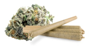 (Pre-Rolls): Mimosa Product image
