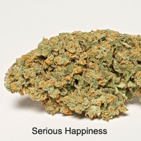 Serious Happiness Product image