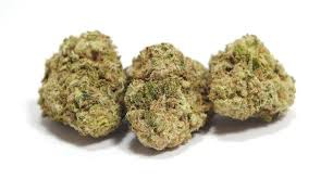 Tangie Biscotti Product image