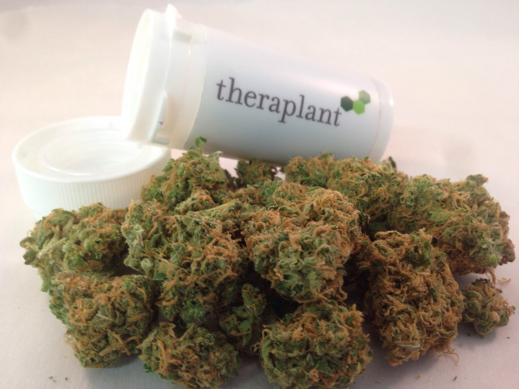 Theraplant 15033 Product image